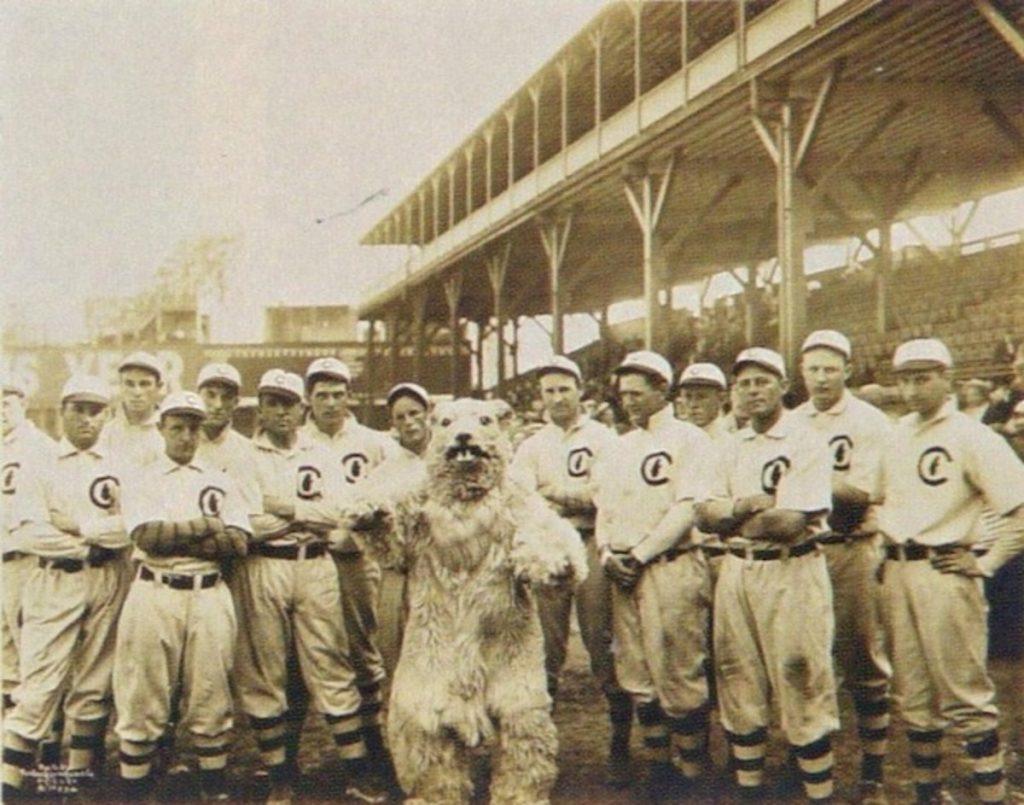 1908 Cubs mascot